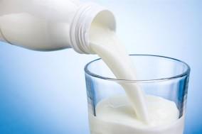 식물성 우유, 당신의 선택은?
