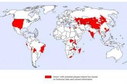 중국 내 폐 페스트 환자 2명 발생